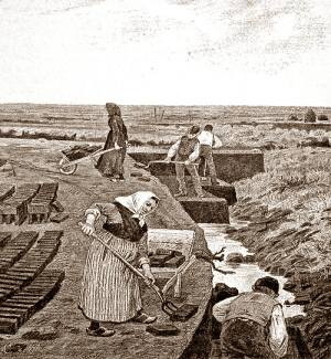 Men digging in a trench, women laying out rows of turves
