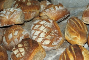 loaves with slashed crust