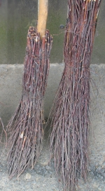 Birch twigs fixed to broomstick